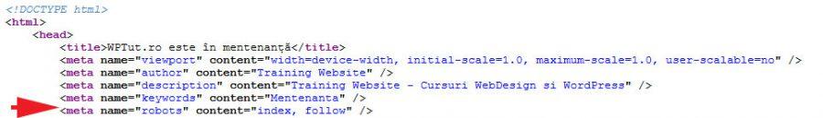 site-in-constructie-robots-meta-tag