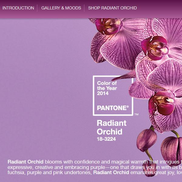 Radiant Orchid Culoarea Anului 2014
